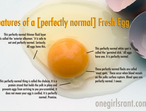EggOpened_sm