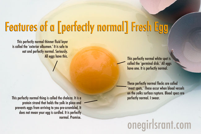 how to tell if farm fresh eggs are bad
